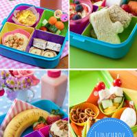 Lunchbox 101