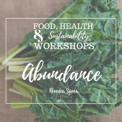Abundance workshop